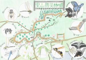 里山防災林の道~芋掘りハイキングロード~(和田侑佳 関西創価高等学校)