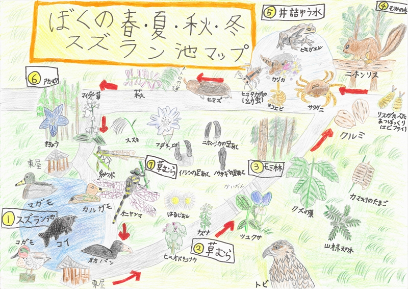 小学生の部_環境大臣賞『ぼくの春・夏・秋・冬 スズラン池マップ』